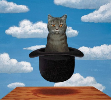 surreal image of a cat in a hat. So, what's normal?
